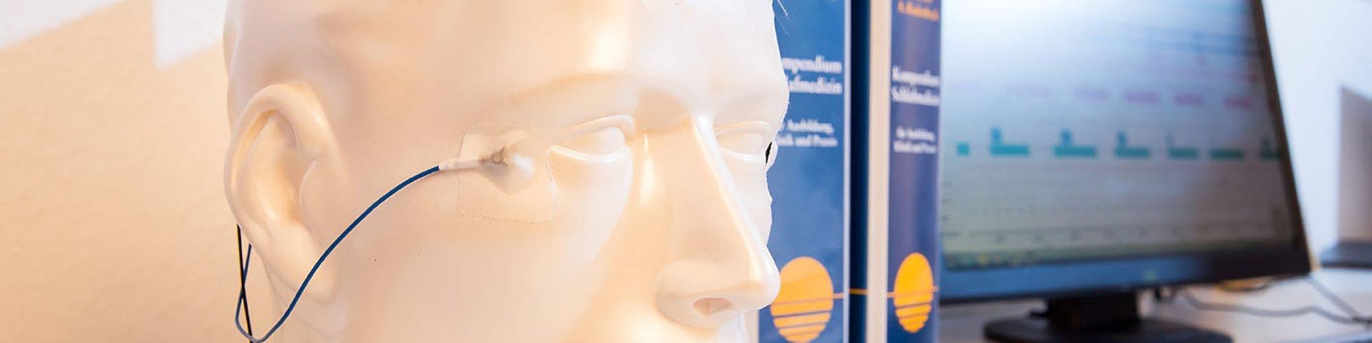 Kopf Modell, im Hintergrund ein Monitor